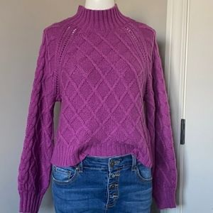 American Eagle mauck turtleneck purple sweater